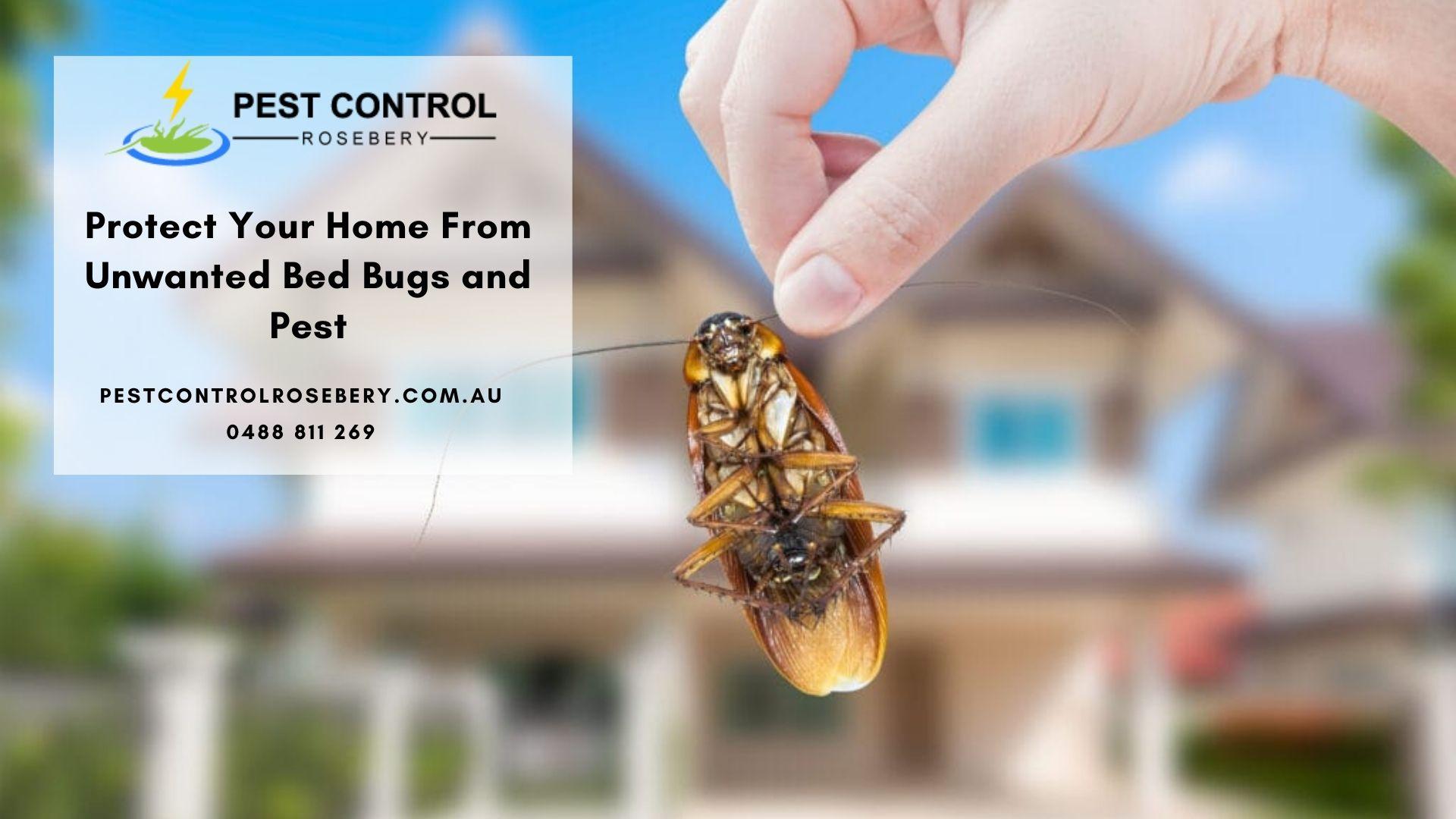 Residential pest control Rosebery