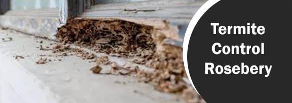 Termite Control Rosebery